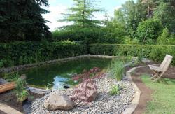 Landschaft baum schwimmteiche for Naturteich zum schwimmen